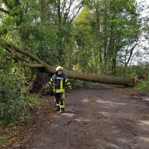 Orkantief Xavier sorgt für Dauereinsätze der Feuerwehren in Lohne